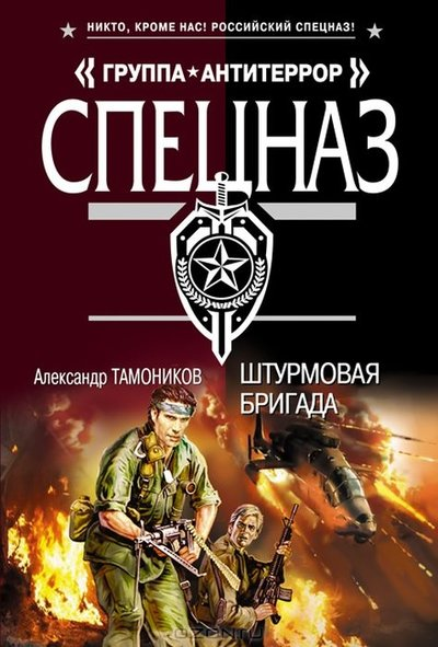 Александр Тамоников - Штурмовая бригада